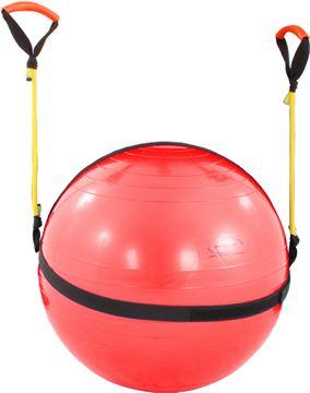 Imagem de Physicusball 55cm com Rubber Band
