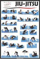 Imagem de Cartaz Jiu-Jitsu