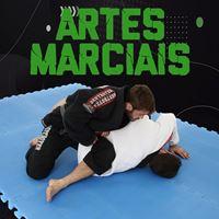 Imagem de categoria Artes Marciais